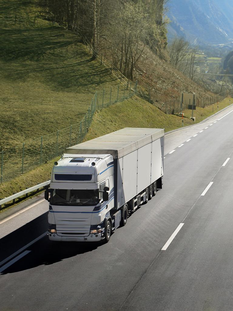 Transporta marfa fara intermediari cu BidTrans.eu